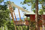Das Rose Gums Wilderness Retreat: Übernachten im Baumhaus mitten im tropischen Regenwald
