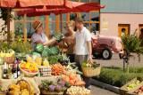 Südpfalz - Selbstvermarkter