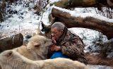 Wolfsfütterung im Wolfspark Werner Freund von Hihawai