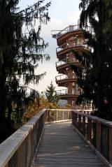 Turm des Baumwipfelpfad Orscholz