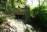 Westwall Bunker am Halberg