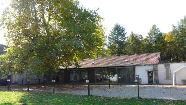 Restaurant Scheune Neuhaus