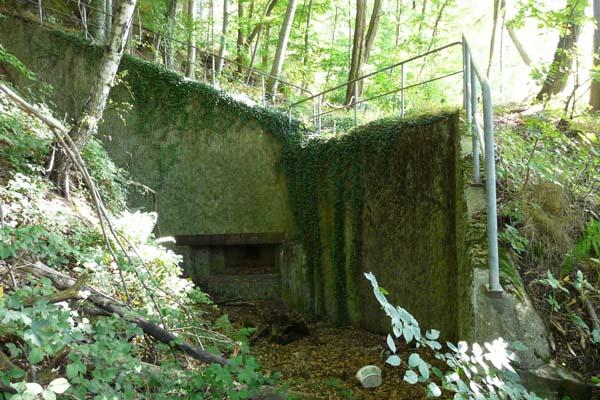 Der Westwall: Bunker am Halberg