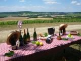 Champagnerpicknick bei Remy Massin et Fils