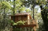 Baumhütte im Luberon