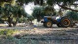 Landwirtschaft in Anissaras von Hihawai