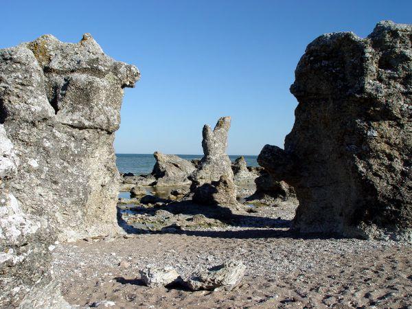 Raukar auf Gotland, Naturschutzgebiet Folhammar