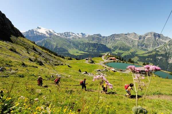 Wandern in Engelberg