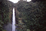 Akaka Falls 3 von Hihawai