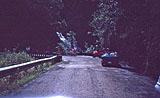 Straße nach Hana: Dunkel am hellichten Tag von Hihawai
